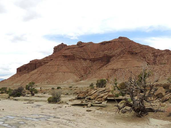 Photograph - Desert Study Utah by Andrew Chambers