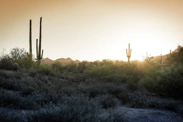 Photograph - Desert Sunrise by Bud Simpson