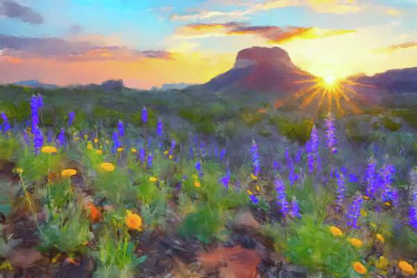 Desert Flowers Wall Art - Painting - Desert Sunset by Gary Grayson
