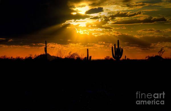 Wall Art - Photograph - Desert Sunset by Kelly Wade