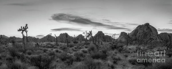 Desert Sunset Photograph - Desert Sunset Panorama Bw by Michael Ver Sprill