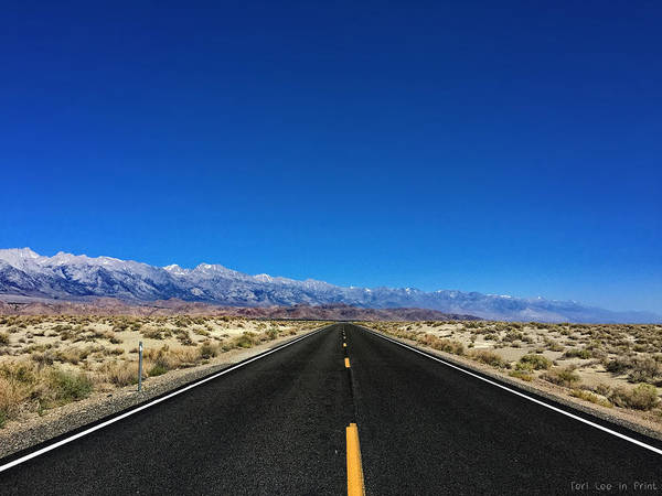 Photograph - Desert To The Mountains by Teri Ridlon