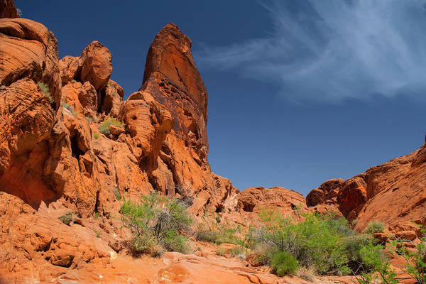 Photograph - Desert Tower Valley Of Fire by Frank Wilson