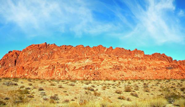 Photograph - Desert Valley Of Fire by Frank Wilson