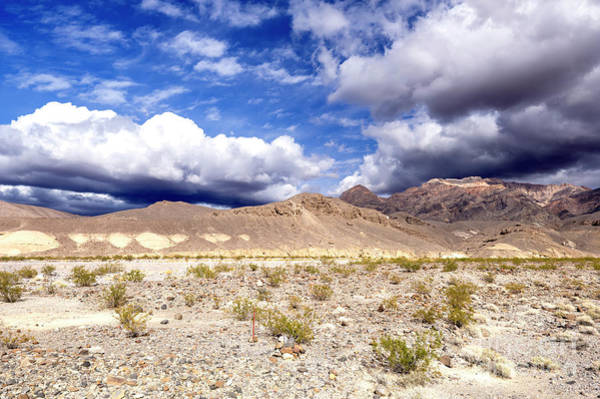 Photograph - Desert View In Death Valley by John Rizzuto