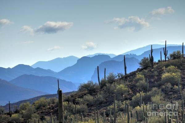 Wall Art - Photograph - Arizona Desert Vista by Ann Loyd