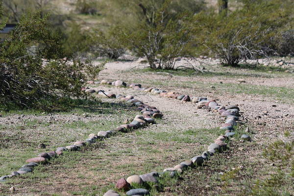 Photograph - Desert Walking Trail  by Christy Pooschke