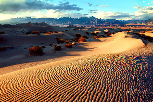 Photograph - Desert Waves by Renee Sullivan