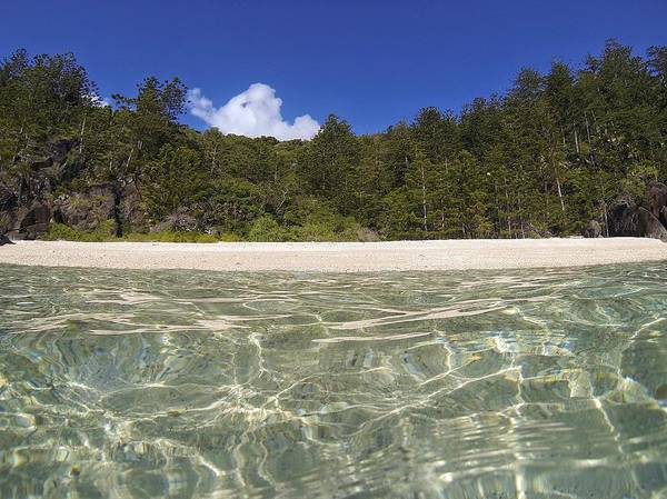 Photograph - Deserted Beach On Hook Island, The Whitsundays by Keiran Lusk