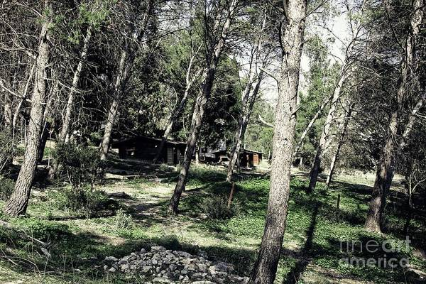 Wall Art - Photograph - Deserted Cabins by Jackie Mestrom