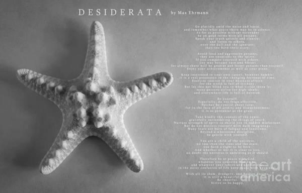 Photograph - Desiderata by Andrea Anderegg