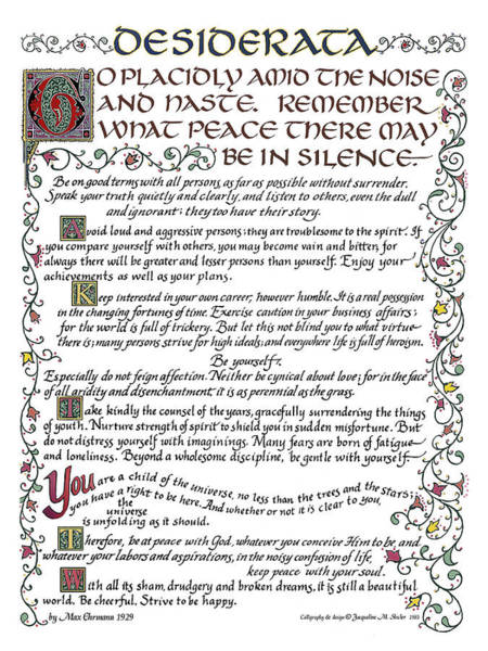 Drawing - Desiderata by Jacqueline Shuler