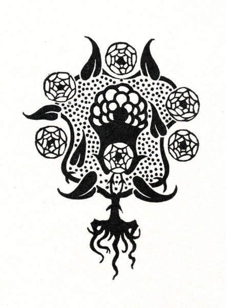 Backdrop Drawing - Design For The Front Cover Of Salome by Aubrey Beardsley
