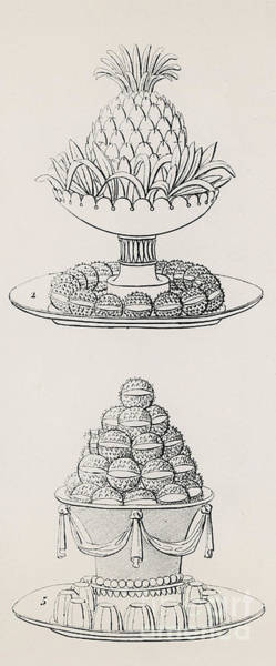 Pineapples Drawing - Designs By Antoine Careme by Marie Antoine Careme