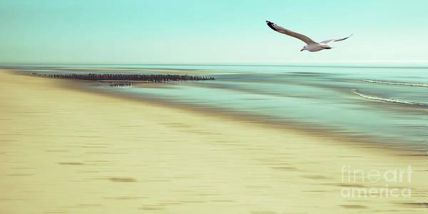 Photograph - Desire Light Vintage2 by Hannes Cmarits