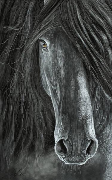 Painting - Detail In Black by Terry Kirkland Cook