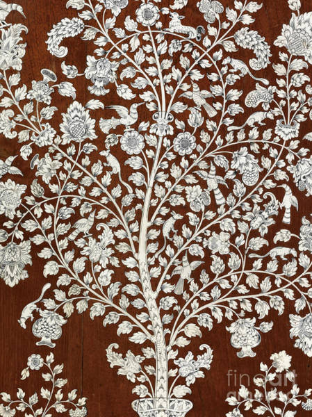Chest Of Drawers Photograph - Detail Of A Vintage Botanical Pattern by Anglo Indian School