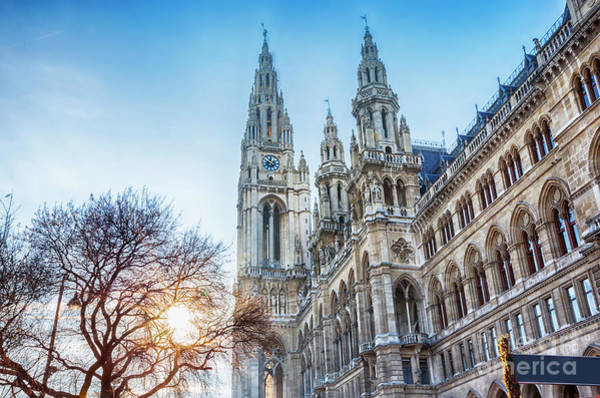 Photograph - detail of Rathaus of Vienna during winter Christmas market by Ariadna De Raadt