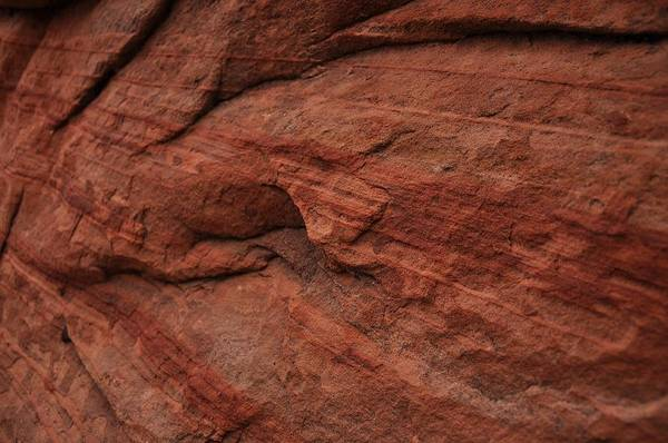 Photograph - Detail Of The Layers In The Sandstone by Frank Madia