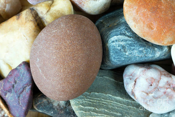 Wall Art - Photograph - Detail Of Tthe Pebble Stones by Michal Boubin