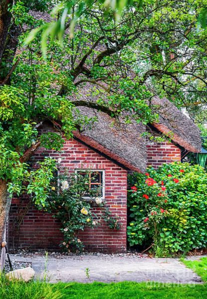Photograph - Detail Of Typical Dutch Old Yard by Ariadna De Raadt