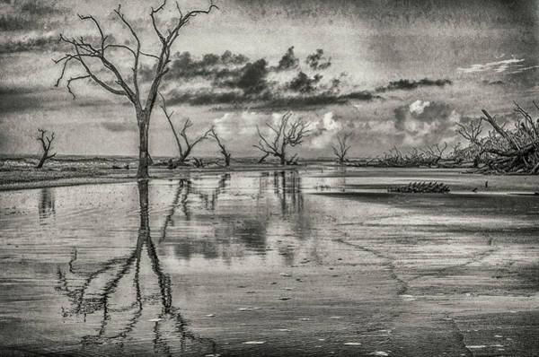 Wildlife Refuge Digital Art - Detritus by Jim Cook