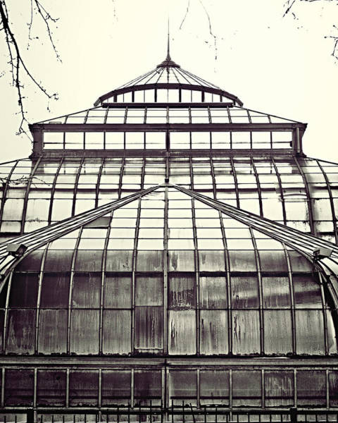 Conservatory Photograph - Detroit Belle Isle Conservatory by Alanna Pfeffer
