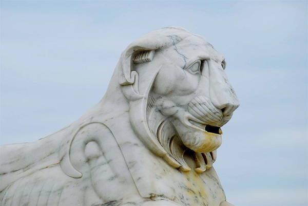 Belle Isle Photograph - Detroit Lion by Michael Peychich