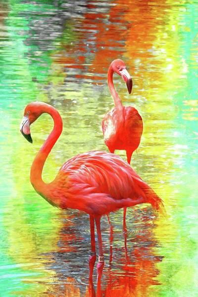Photograph - Deux Flamingos by Alice Gipson