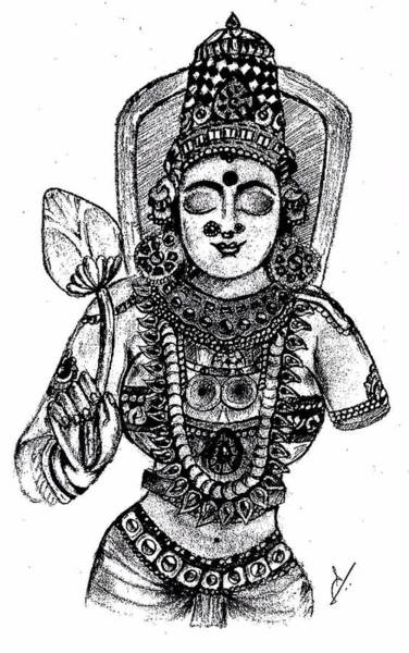 Hindu Goddess Drawing - Devi Lakshmi by Sanjay Avasarala