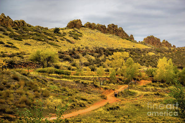 Photograph - Devil's Backbone Hiking Trail by Jon Burch Photography