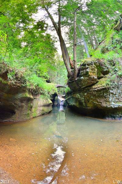 Photograph - Devil's Bathtub At Hocking Hills Ohio Vertical by Lisa Wooten