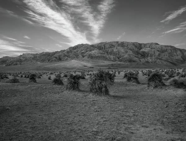 Photograph - Devil's Cornfield - Black And White by Paul Breitkreuz