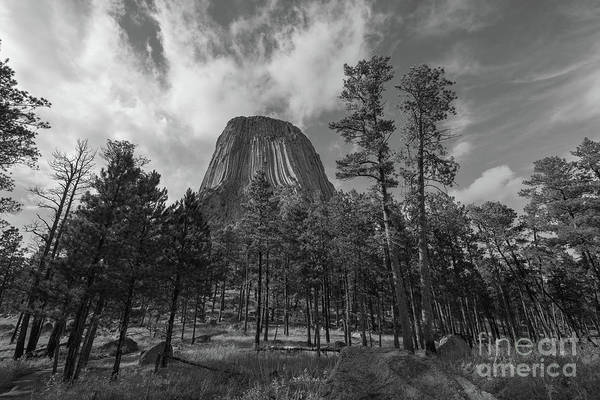 Close Encounters Wall Art - Photograph - Devils Tower Above The Trees Bw by Michael Ver Sprill