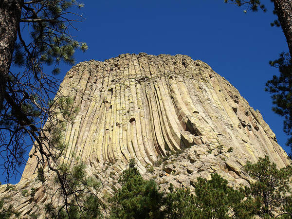 Photograph - Devils Tower Wyoming by James Peterson