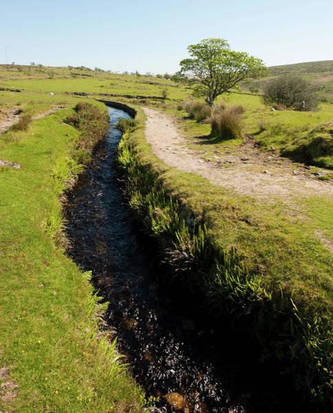Photograph - Devonport Leat, Dartmoor II by Helen Northcott