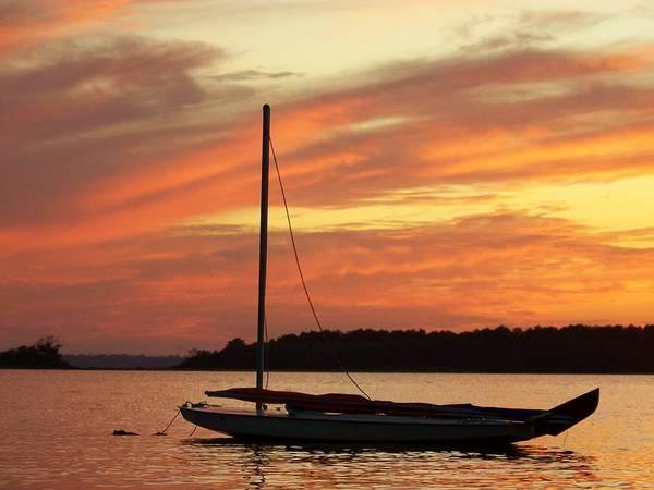 Photograph - Dewey Bay by Trish Tritz