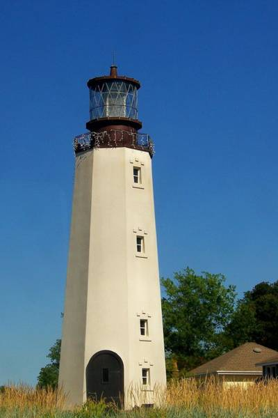Photograph - Dewey Beach Lighthouse by Trish Tritz