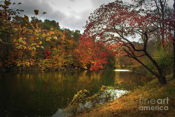 Wall Art - Photograph - Dewey Lake In Autumn by Lena Auxier