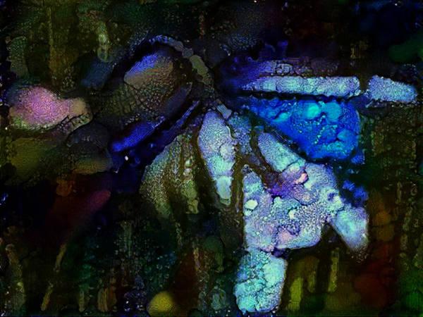 Digital Art - Dewy Poppy by Amanda Moore