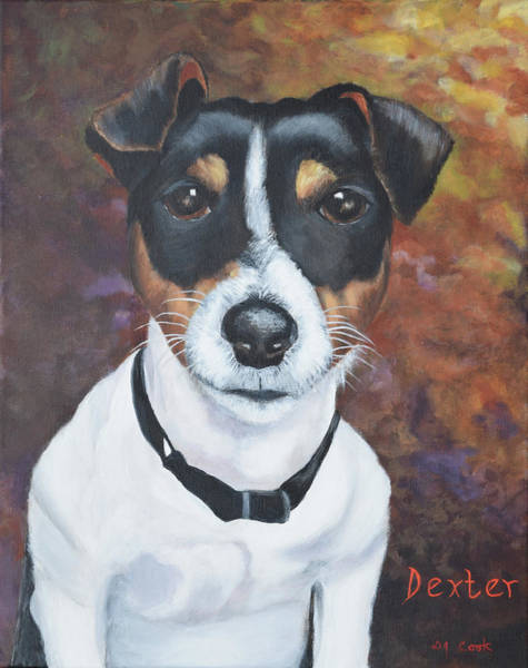 Wall Art - Painting - Dexter by Donna Cook