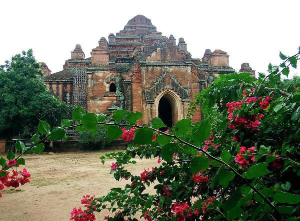 Photograph - Dhammayangyi Pagoda, Bagan by Kurt Van Wagner