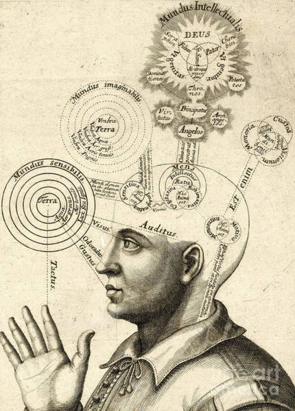 Thought Drawing - Diagram Of Human Thought And The Four Senses by European School