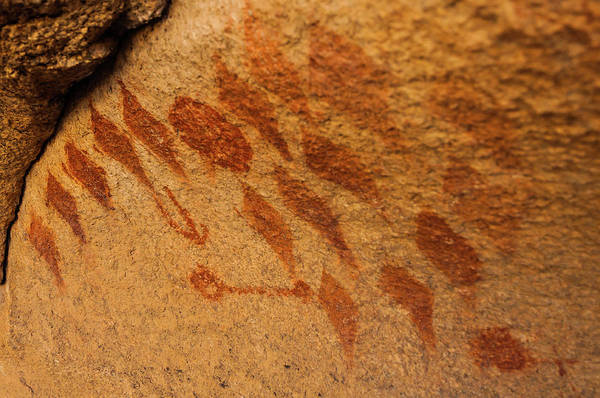 Photograph - Diamond Pictographs by TM Schultze