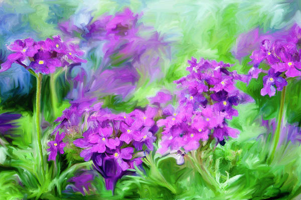 Wall Art - Painting - Dianthus Flowers by Frank Tschakert