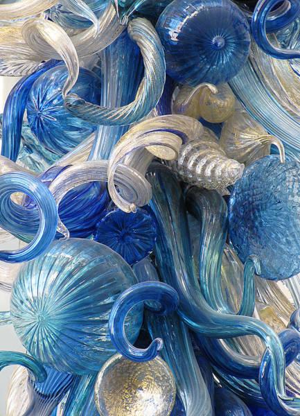 Diaphanous Nudibranch Art Print