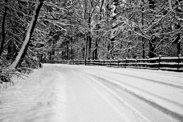 Photograph - Dicksons Mill Road by Joseph Noonan