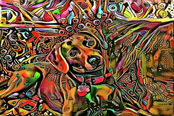 Digital Art - Did Somebody Say Treat? Brown Version by Peggy Collins