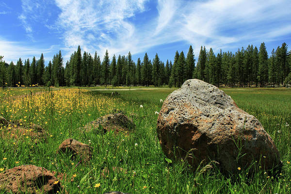 Photograph - Different Boulder Same Springtime by James Eddy