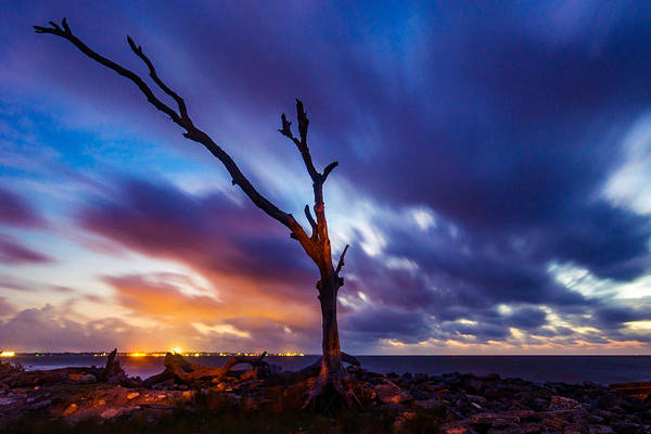 Photograph - Diftwood Twilight Clouds by Chris Bordeleau